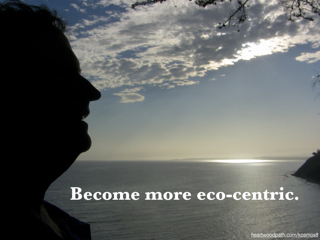 life coach don pierce quote Become more eco-centric