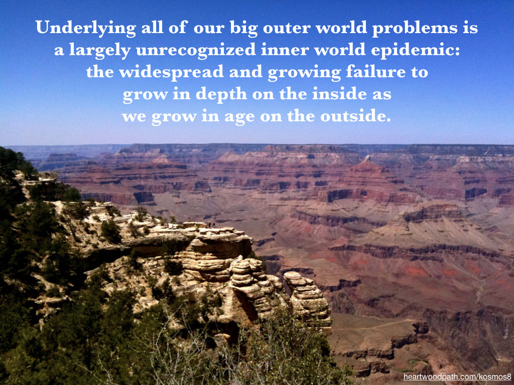 picture of grand canyon and quote Underlying all of our big outer world problems is a largely unrecognized inner world epidemic: the widespread and growing failure to grow in depth on the inside as we grow in age on the outside