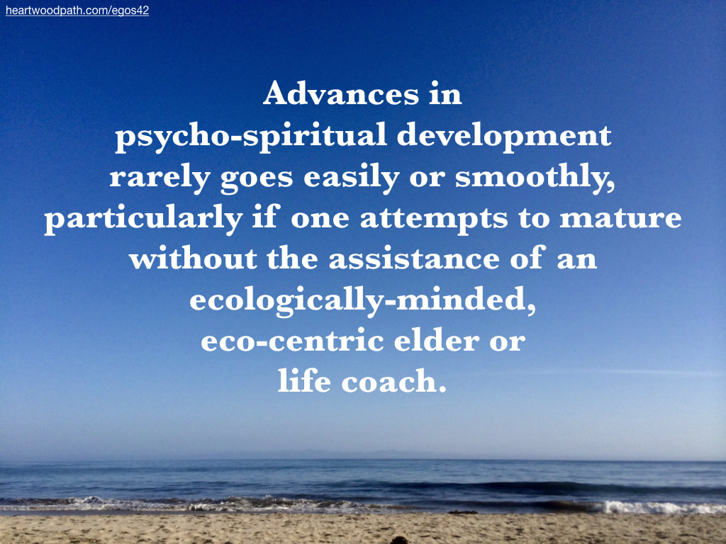 Picture beach quote Advances in psycho-spiritual development rarely goes easily or smoothly, particularly if one attempts to mature without the assistance of an ecologically-minded, eco-centric elder or life coach