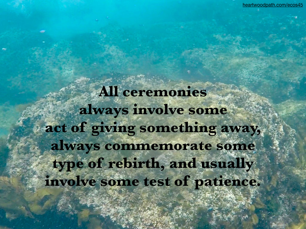 Picture reef underwater quote All ceremonies always involve some act of giving something away, always commemorate some type of rebirth, and usually involve some test of patience