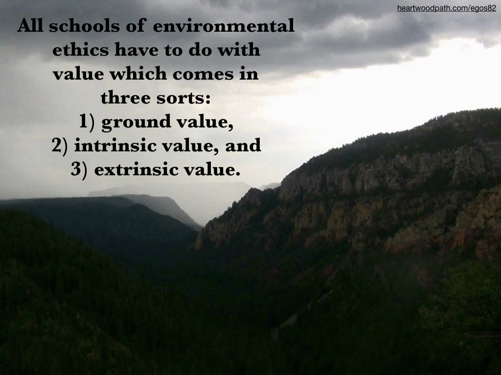 Picture foggy mountain valley quote All schools of environmental ethics have to do with value which comes in three sorts 1) ground value, 2) intrinsic value, and 3) extrinsic value
