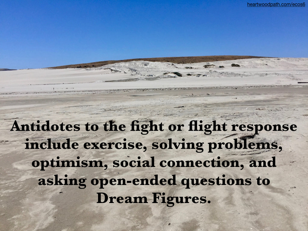 Picture sand dunes quote Antidotes to the fight or flight response include exercise, solving problems, optimism, social connection, and asking open-ended questions to Dream Figures.