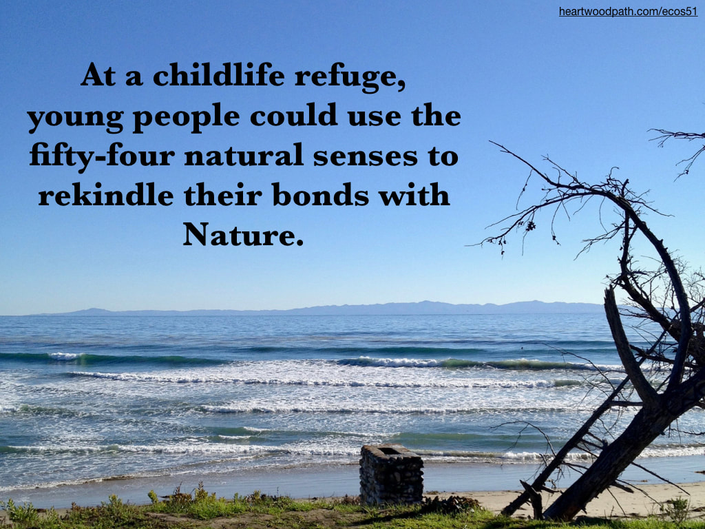 Picture small waves island view quote At a childlife refuge, young people could use the fifty-four natural senses to rekindle their bonds with Nature