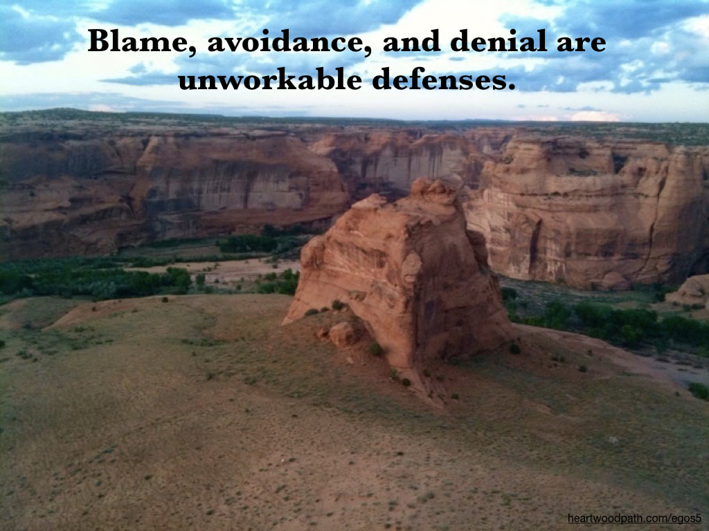 Picture canyon quote Blame, avoidance, and denial are unworkable defenses