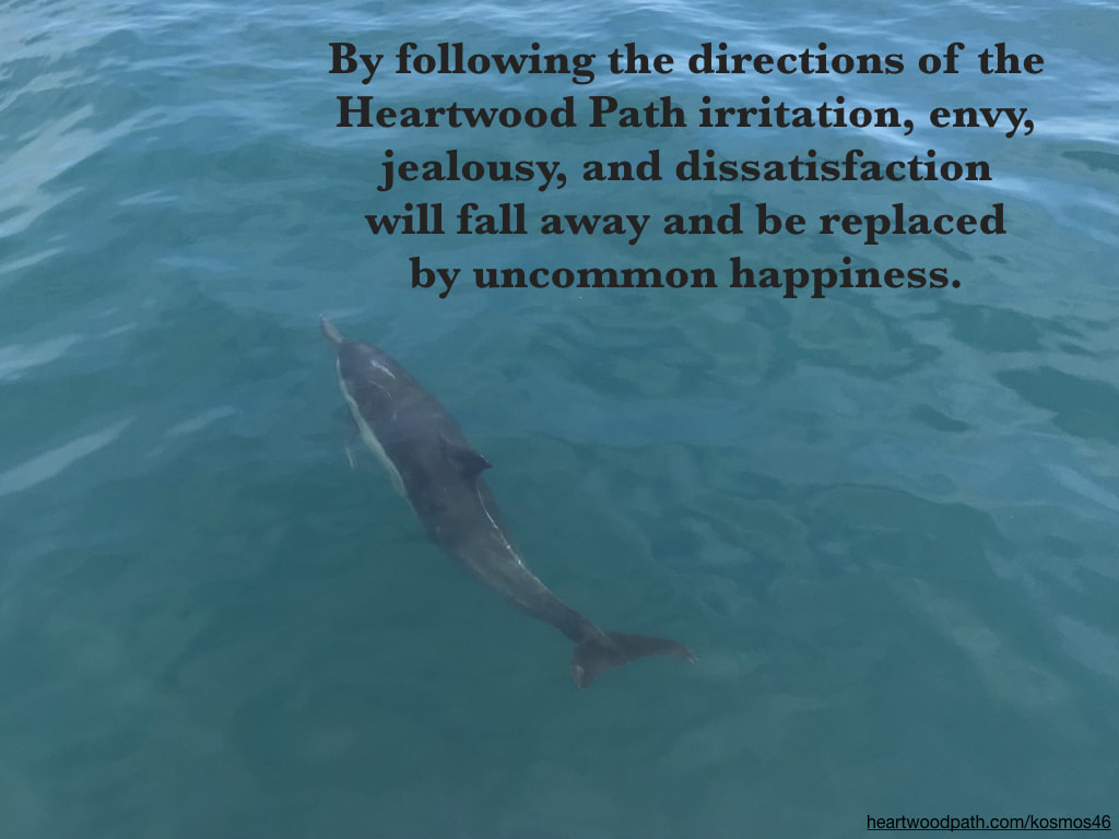 Picture dolphin with words By following the directions of the Heartwood Path irritation, envy, jealousy, and dissatisfaction will fall away and be replaced by uncommon happiness