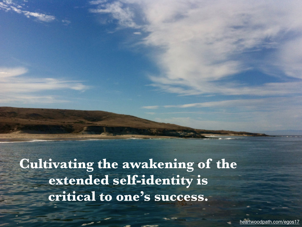 Picture island quote Cultivating the awakening of the extended self-identity is critical to one's success