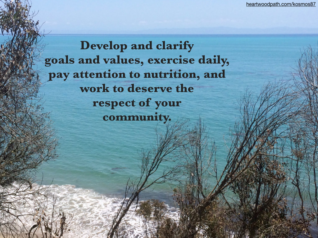 Picture ocean view trees island quote Develop and clarify goals and values, exercise daily, pay attention to nutrition, and work to deserve the respect of your community.
