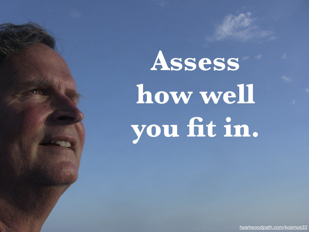 picture-of-life-coach-don-pierce-saying-Assess how well you fit in