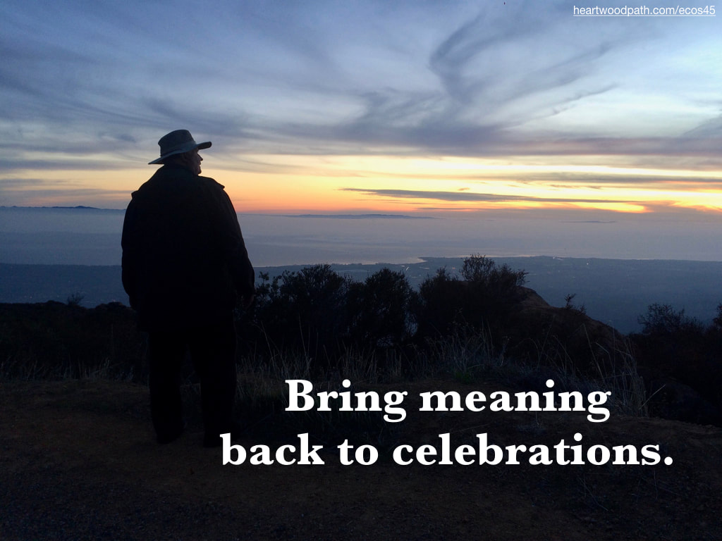 picture-don-pierce-life-coach-saying-Bring meaning back to celebrations.