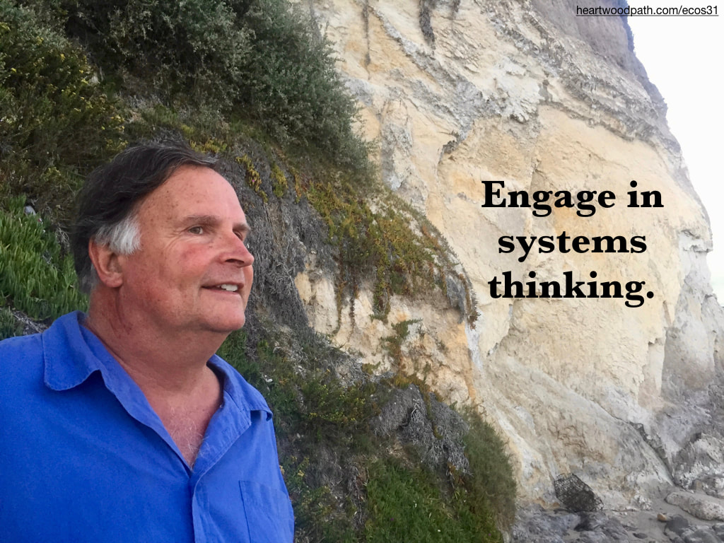 picture-don-pierce-life-coach-saying-Engage in systems thinking