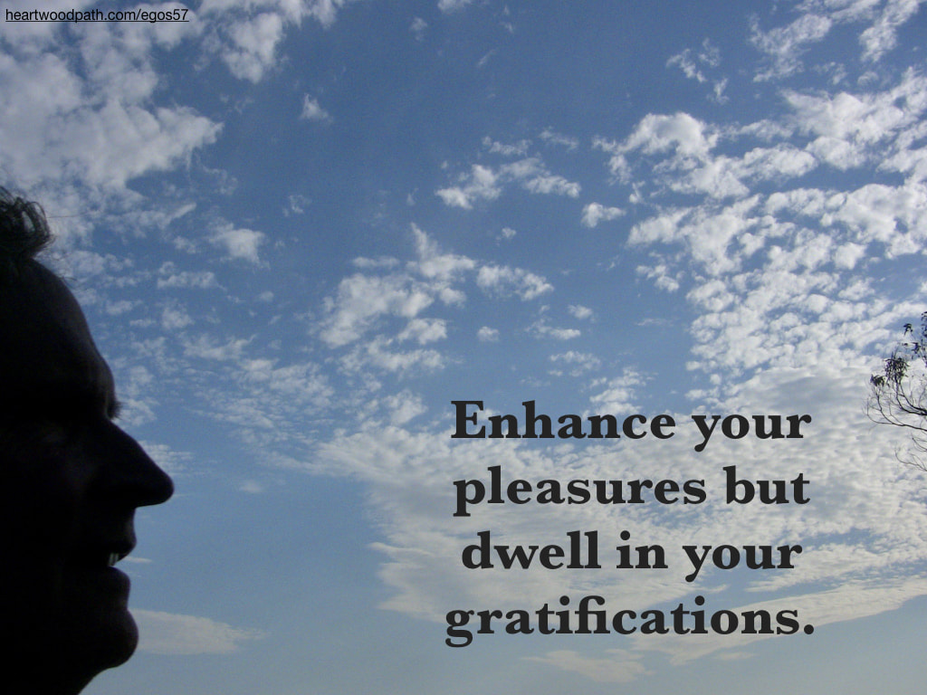 picture-don-pierce-life-coach-saying-Enhance your pleasures but dwell in your gratifications