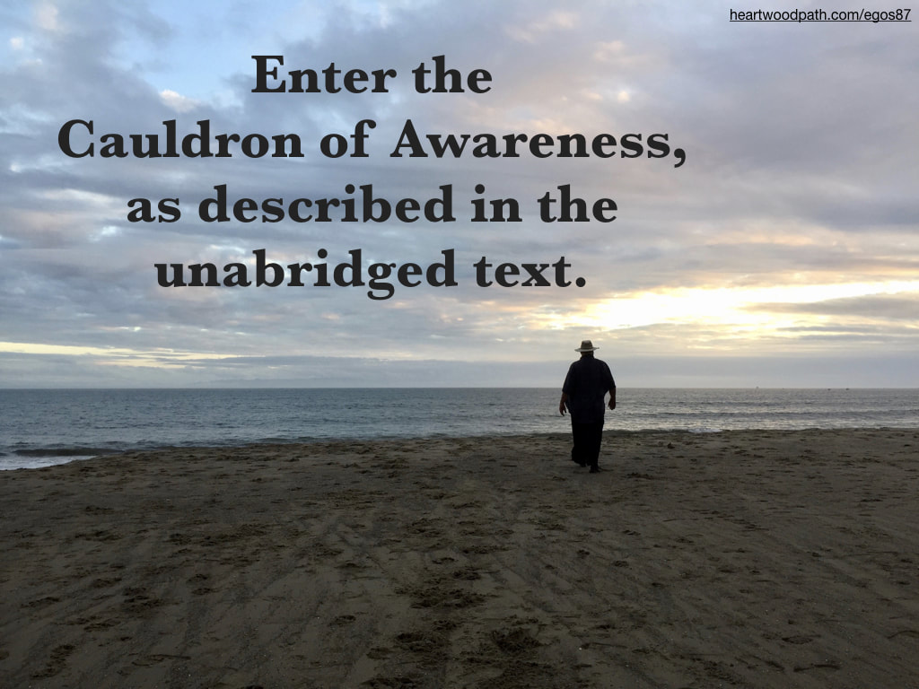 picture-don-pierce-life-coach-saying-Enter the Cauldron of Awareness
