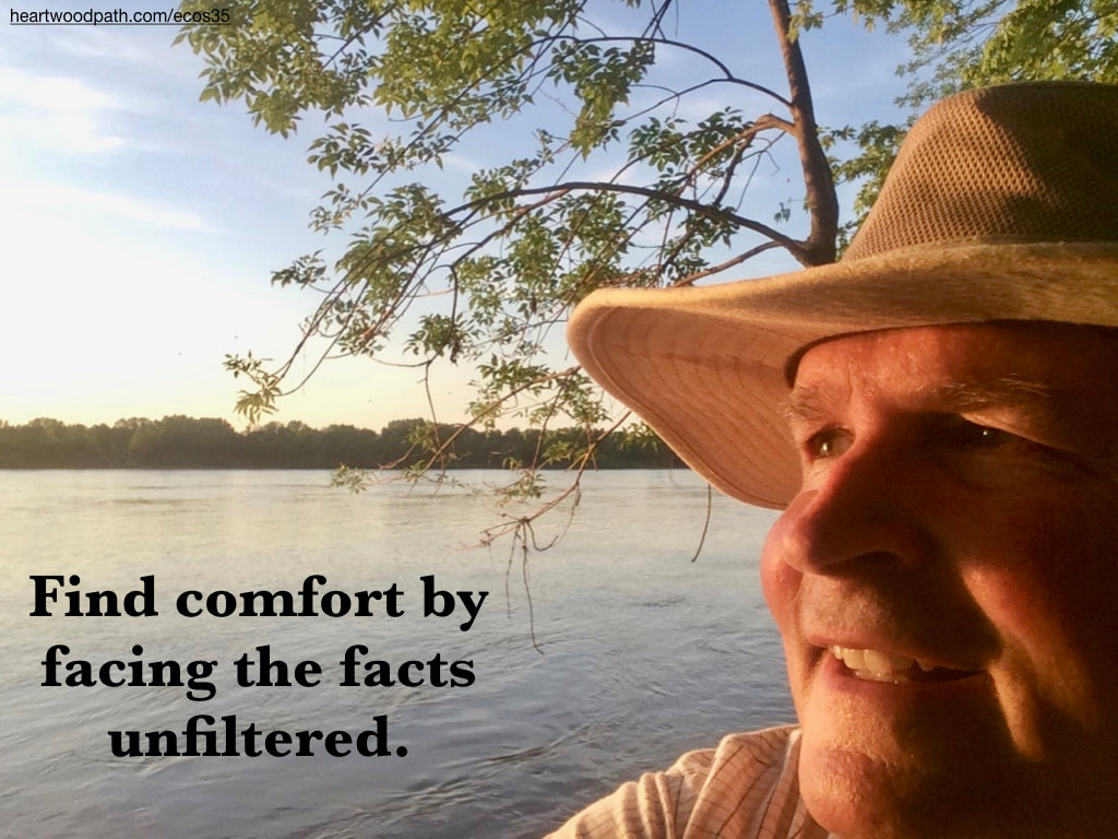 picture-don-pierce-life-coach-saying-Find comfort by facing the facts unfiltered.