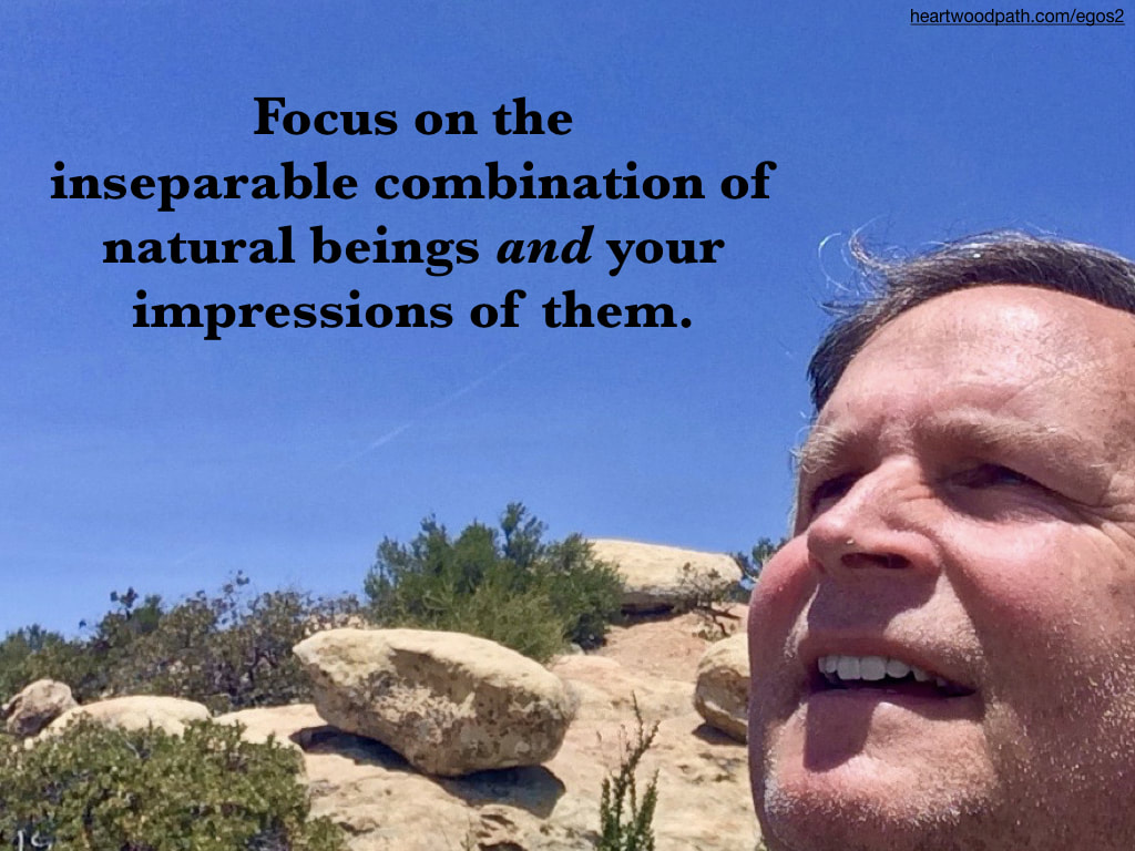 picture-life-coach-don-pierce-saying-Focus on the inseparable combination of natural beings and your impressions of them