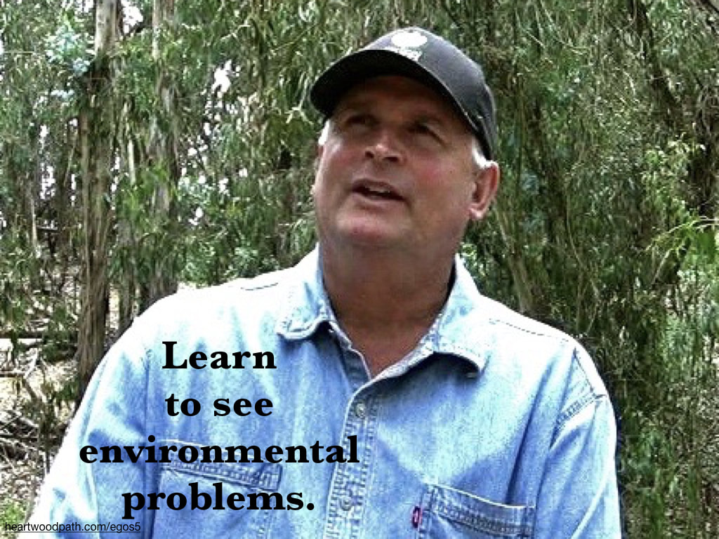 picture-life-coach-don-pierce-saying-Learn to see environmental problems