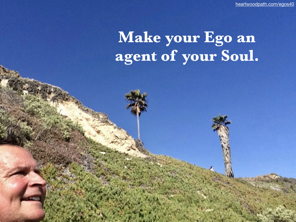 picture-life-coach-don-pierce-saying-Make your Ego an agent of your Soul