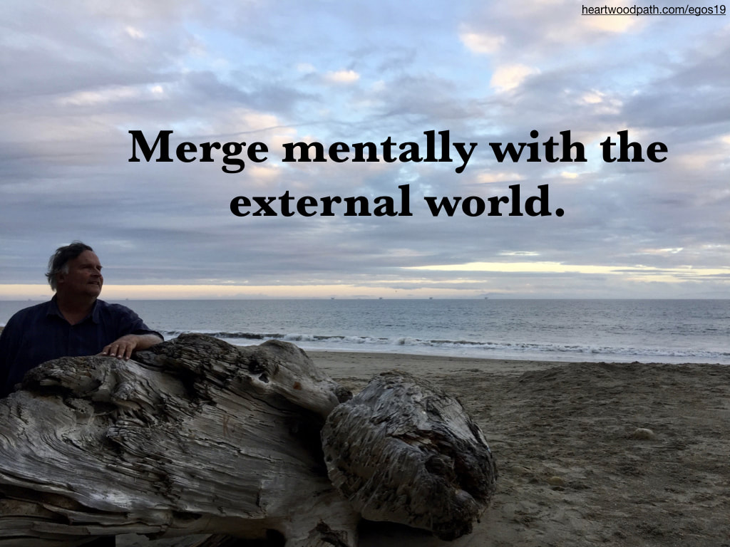 picture-life-coach-don-pierce-saying-Merge mentally with the external world