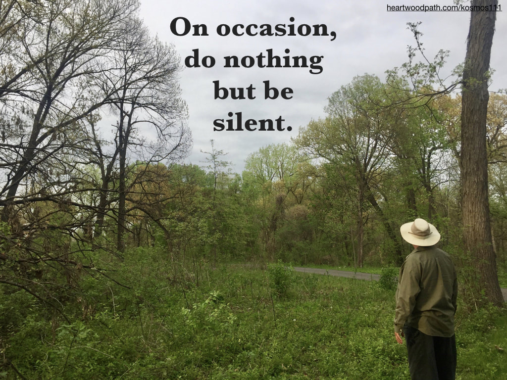 picture-life-coach-don-pierce-saying-On occasion, do nothing but be silent