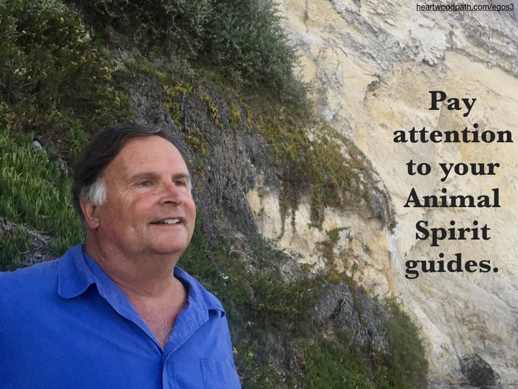 picture-life-coach-don-pierce-saying-Pay attention to your Animal Spirit guides