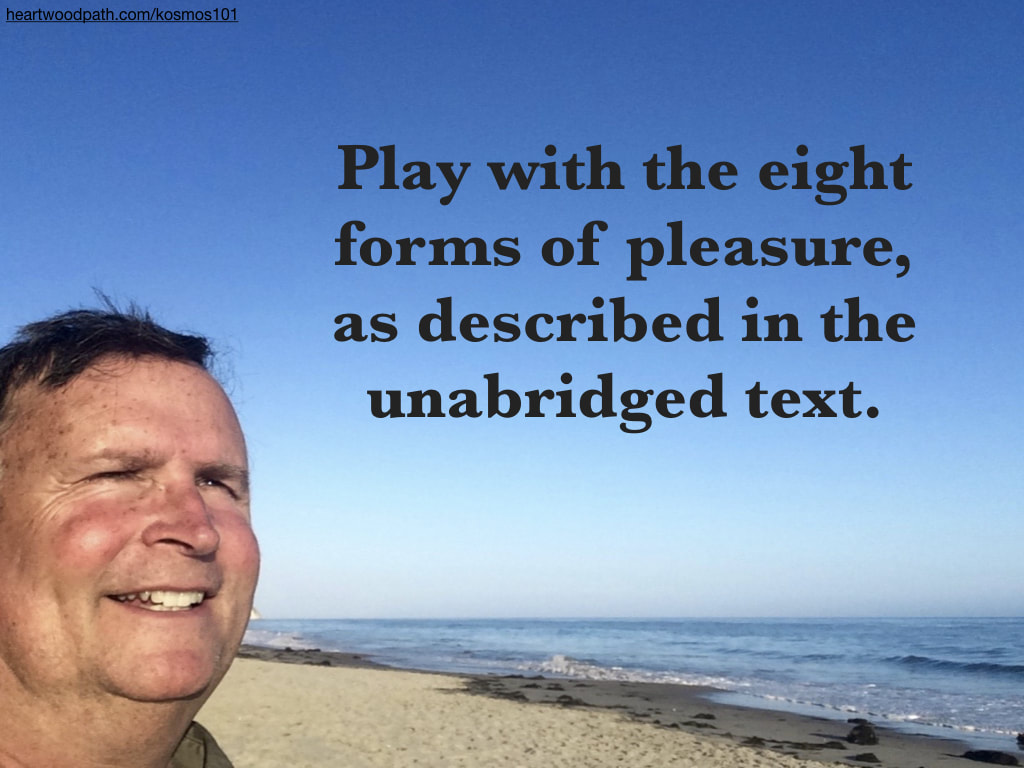 picture-life-coach-don-pierce-saying-Play with the eight forms of pleasure, as described in the unabridged text
