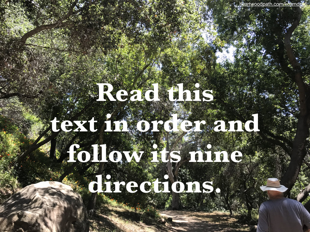 picture-of-life-coach-don-pierce-saying-Read this text in order and follow its nine directions
