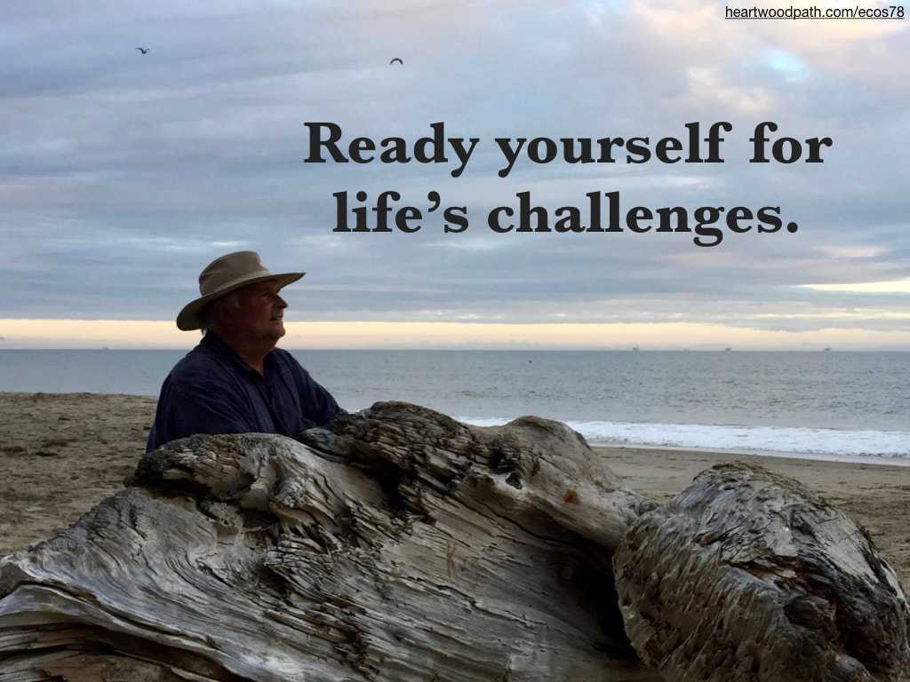 picture-don-pierce-life-coach-saying-Ready yourself for life's challenges