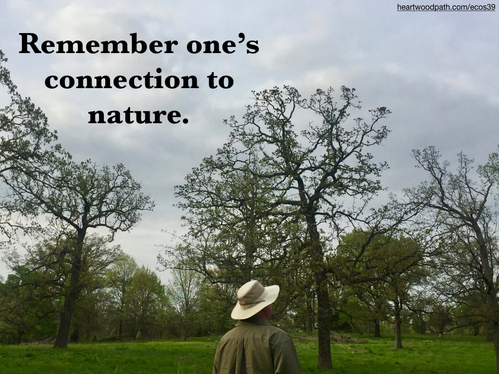 picture-don-pierce-life-coach-saying-Remember one's connection to nature