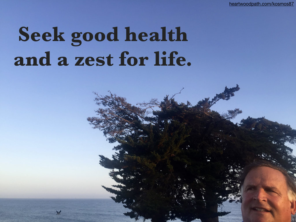 picture-life-coach-don-pierce-saying-Seek good health and a zest for life