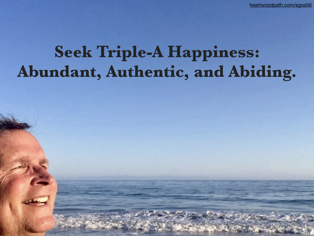 picture-don-pierce-life-coach-saying-Seek Triple-A Happiness: Abundant, Authentic, and Abiding
