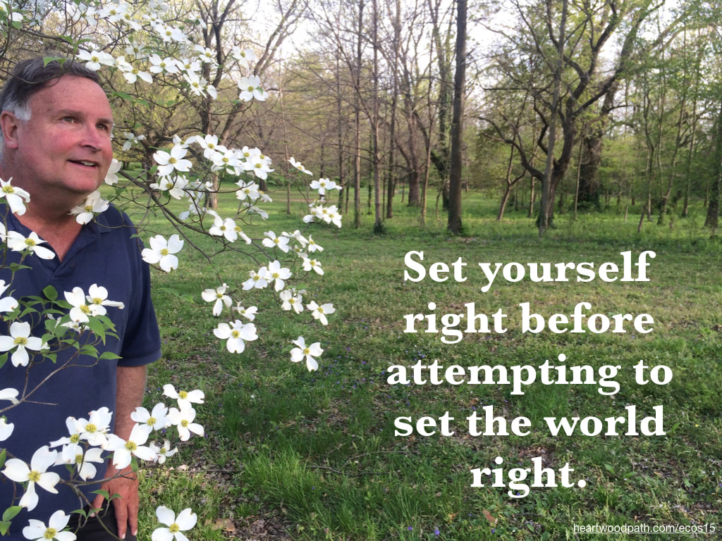 picture-don-pierce-life-coach-saying-Set yourself right before attempting to set the world right.
