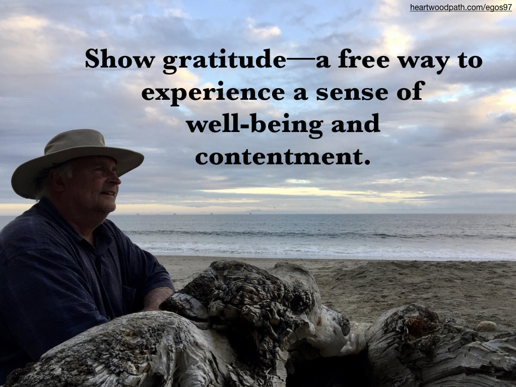 picture-don-pierce-life-coach-saying-Show gratitude––a free way to experience a sense of well-being and contentment