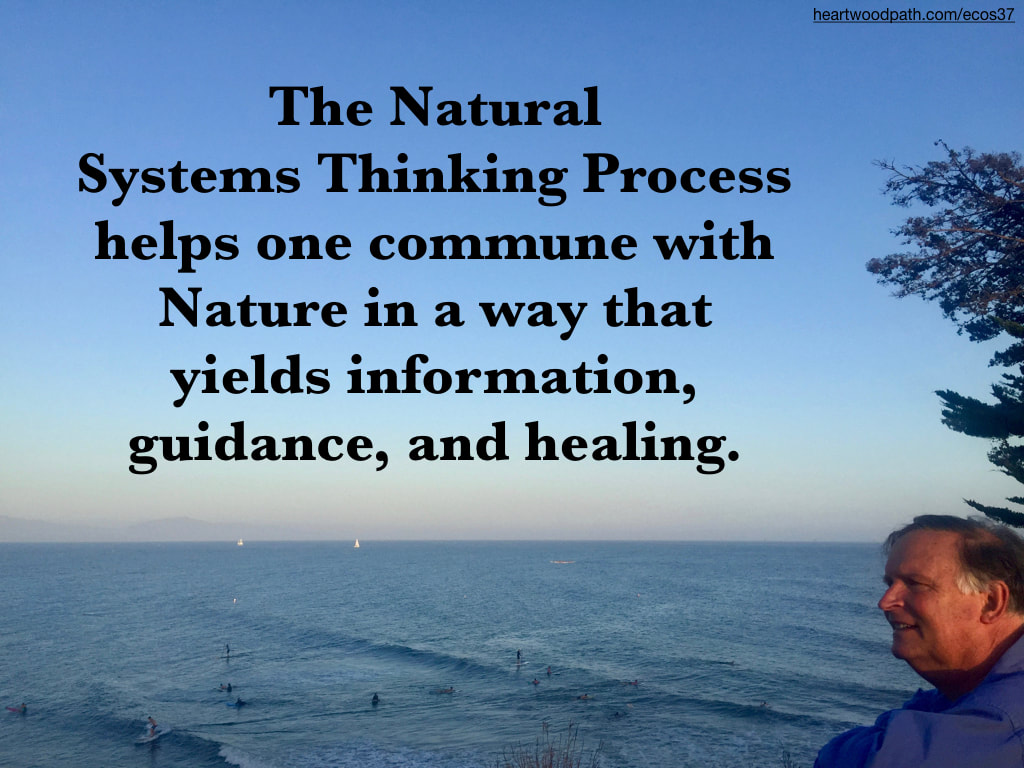 picture-don-pierce-life-coach-saying-The Natural Systems Thinking Process helps one commune with Nature in a way that yields information, guidance, and healing