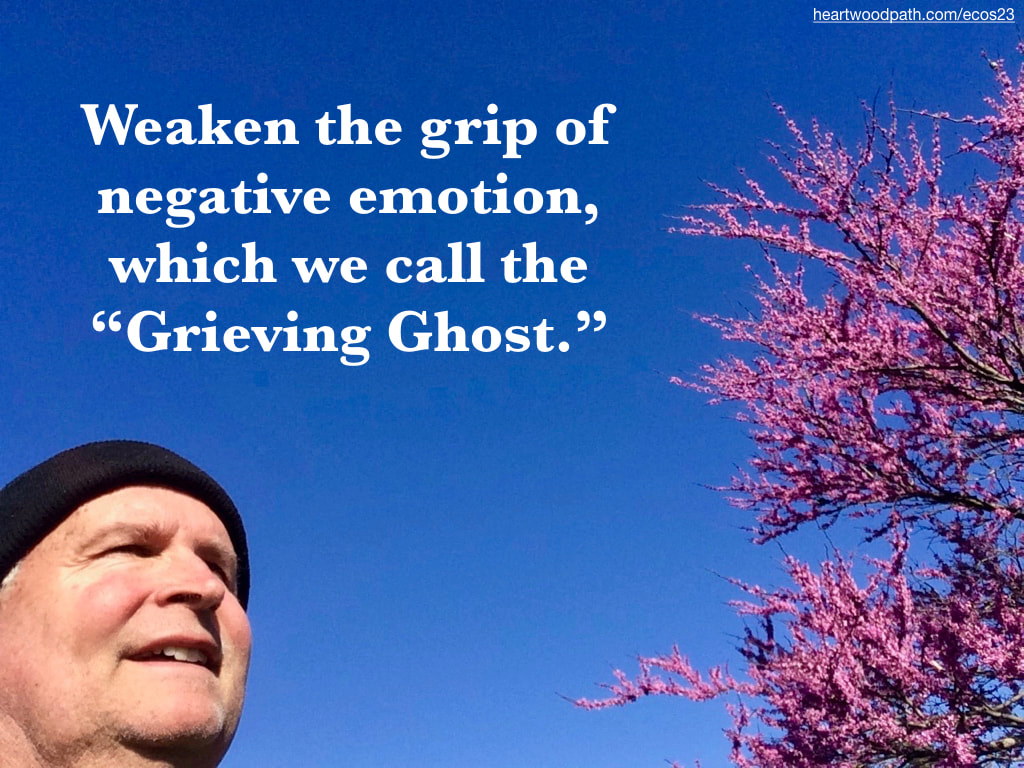 "picture-don-pierce-life-coach-saying-Weaken the grip of negative emotion, which we call the ""Grieving Ghost."""