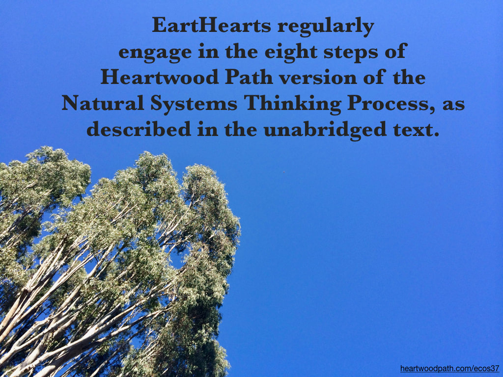 Picture eucalyptus tree quote EartHearts regularly engage in the eight steps of Heartwood Path version of the Natural Systems Thinking Process, as described in the unabridged text