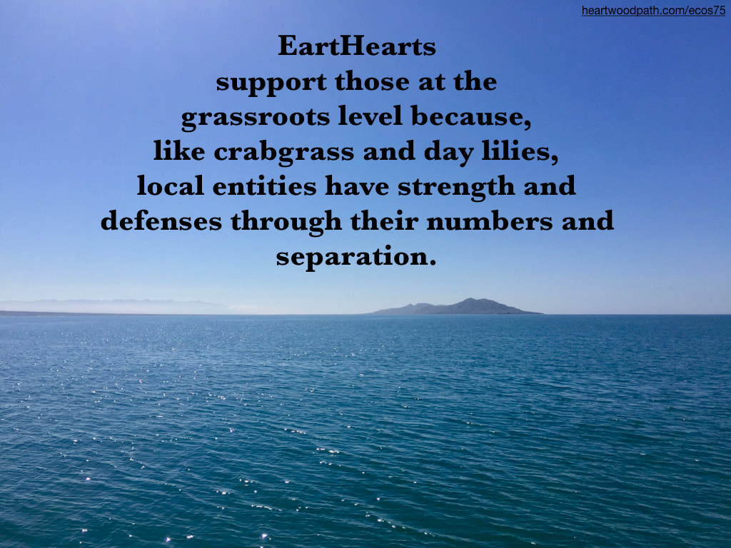 Picture ocean ripples quote EartHearts support those at the grassroots level because, like crabgrass and day lilies, local entities have strength and defenses through their numbers and separation