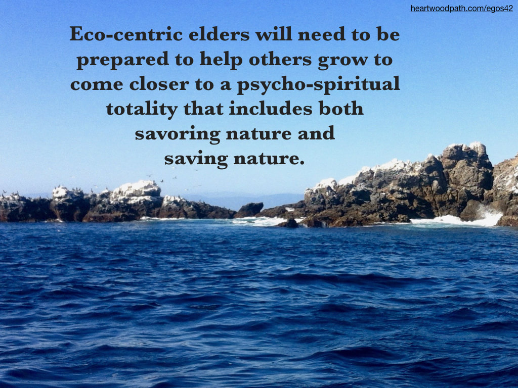 Picture sea birds on rock quote Eco-centric elders will need to be prepared to help others grow to come closer to a psycho-spiritual totality that includes both savoring nature and saving nature