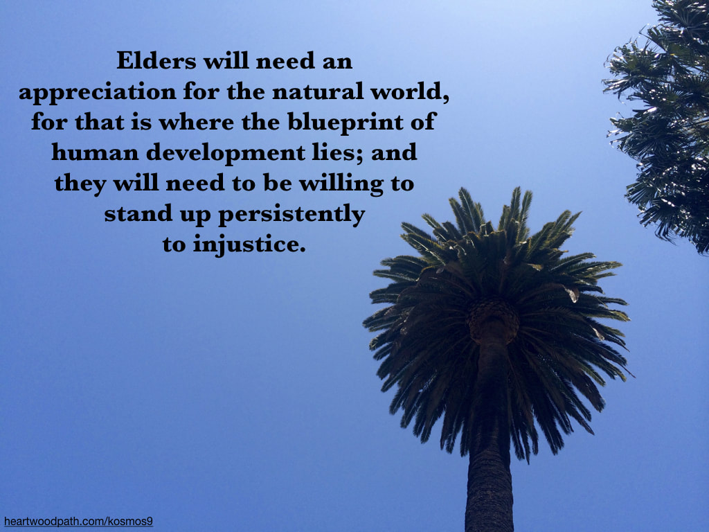 picture of palm trees and quote Elders will need an appreciation for the natural world, for that is where the blueprint of human development lies; and they will need to be willing to stand up persistently to injustice