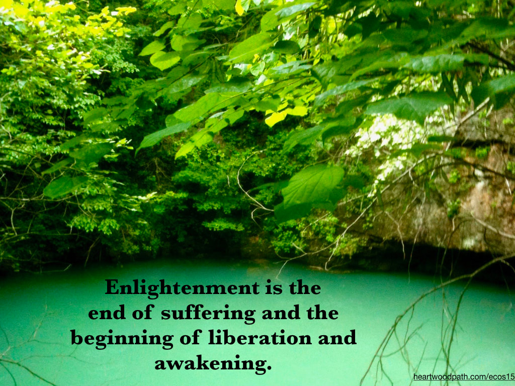 Picture green leaves clear spring quote Enlightenment is the end of suffering and the beginning of liberation and awakening