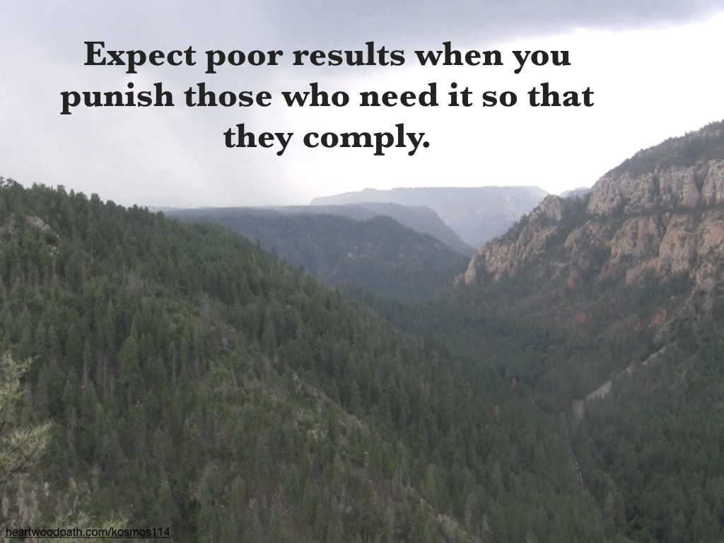 Picture pine tree canyon with quote Expect poor results when you punish those who need it so that they comply