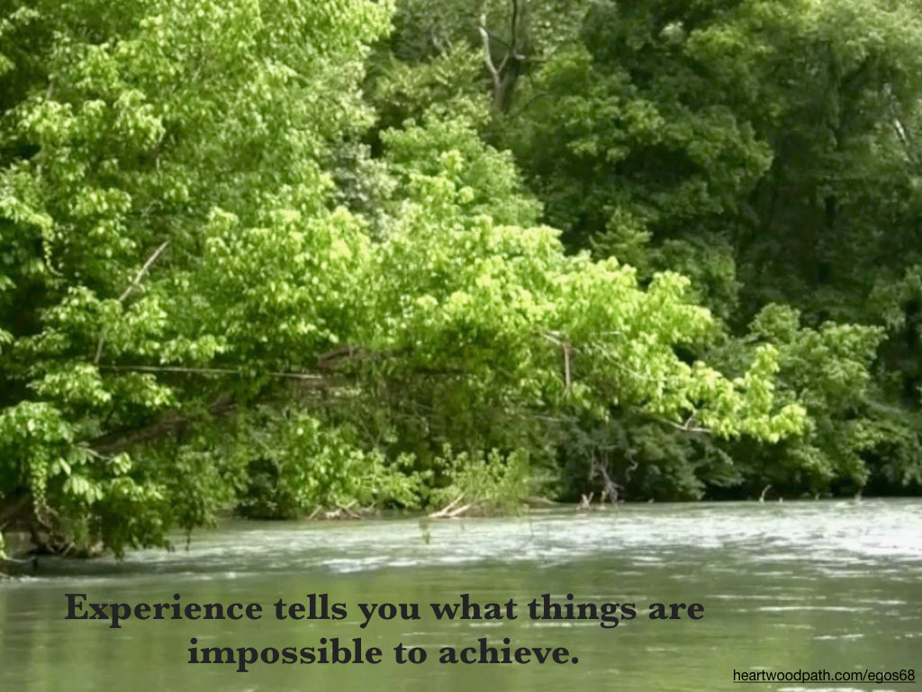 Picture green forest river quote Experience tells you what things are impossible to achieve