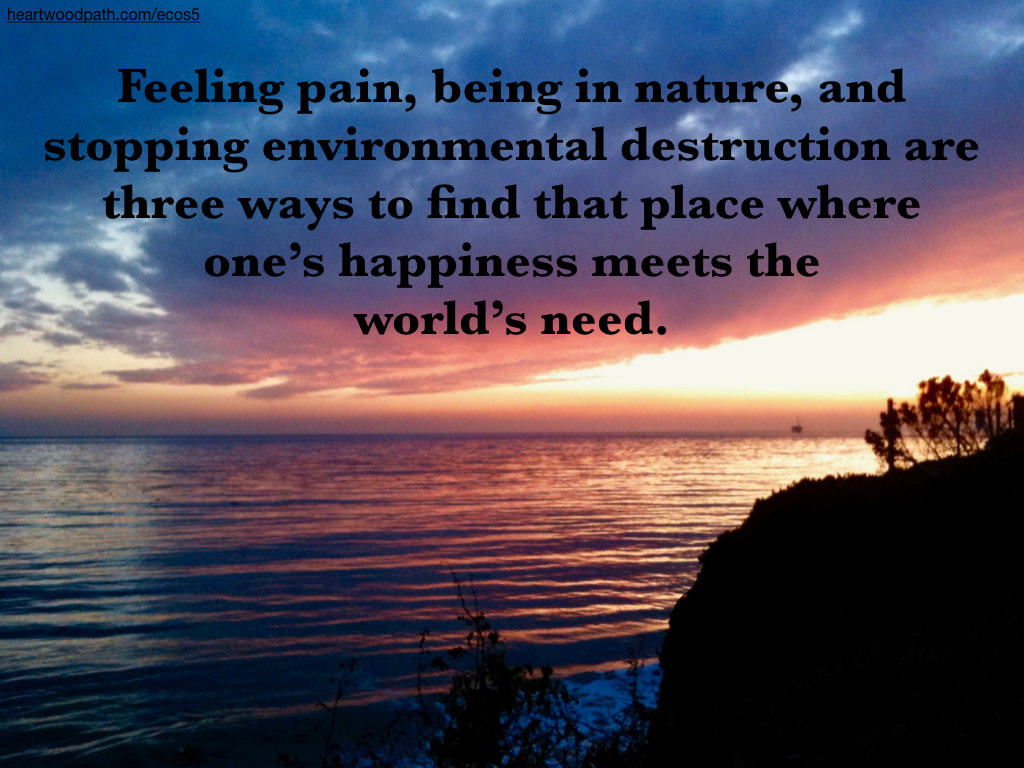 Picture bright sunset quote Feeling pain, being in nature, and stopping environmental destruction are three ways to find that place where one's happiness meets the world's need
