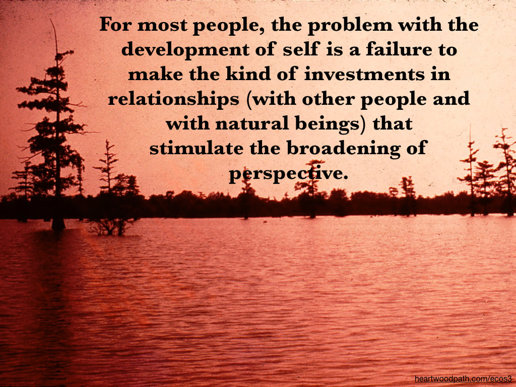 Picture flood quote For most people, the problem with the development of self is a failure to make the kind of investments in relationships (with other people and with natural beings) that stimulate the broadening of perspective