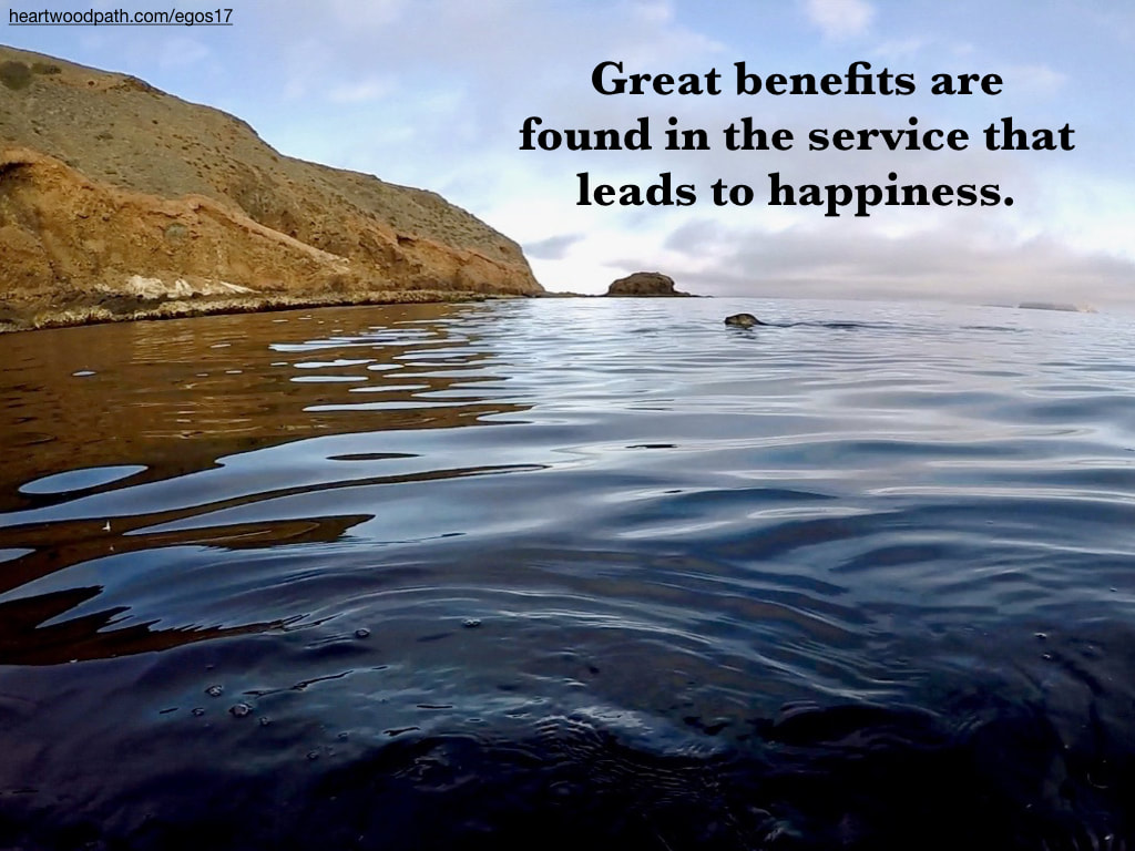 Picture sea lion quote Great benefits are found in the service that leads to happiness