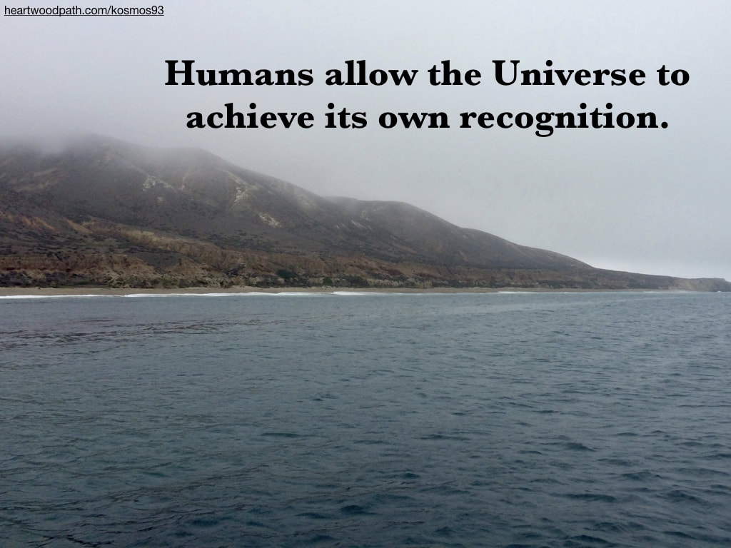 Picture foggy island with quote Humans allow the Universe to achieve its own recognition