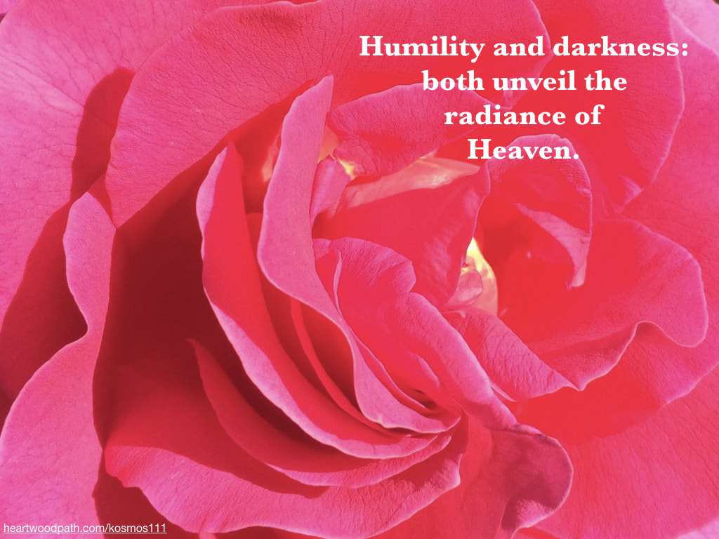 Picture pink rose with quote Humility and darkness: both unveil the radiance of Heaven