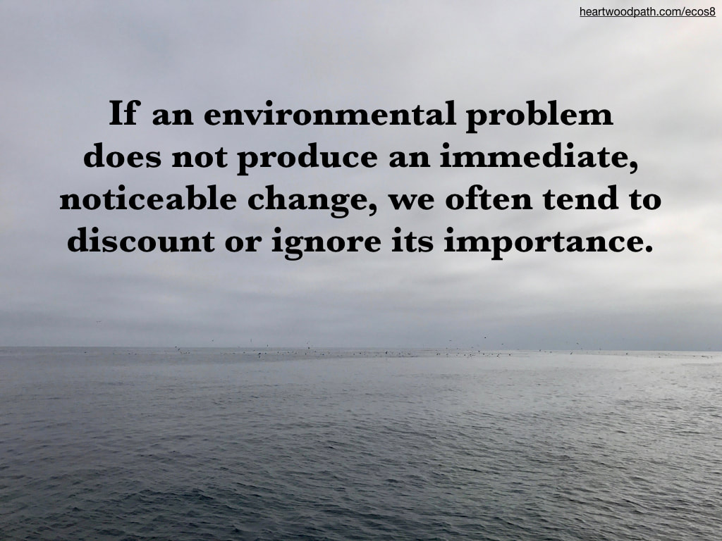 Picture birds feeding ocean quote If an environmental problem does not produce an immediate, noticeable change, we often tend to discount or ignore its importance