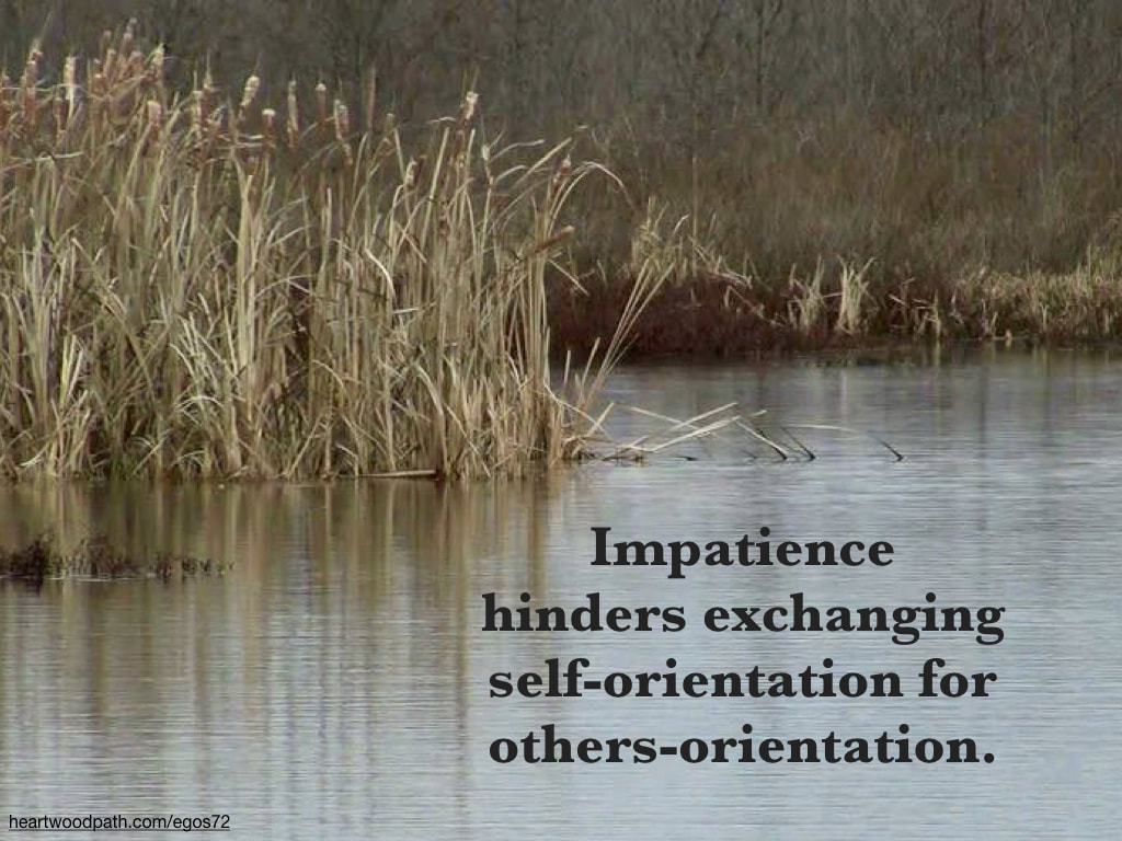 Picture cattails river quote Impatience hinders exchanging self-orientation for others-orientation
