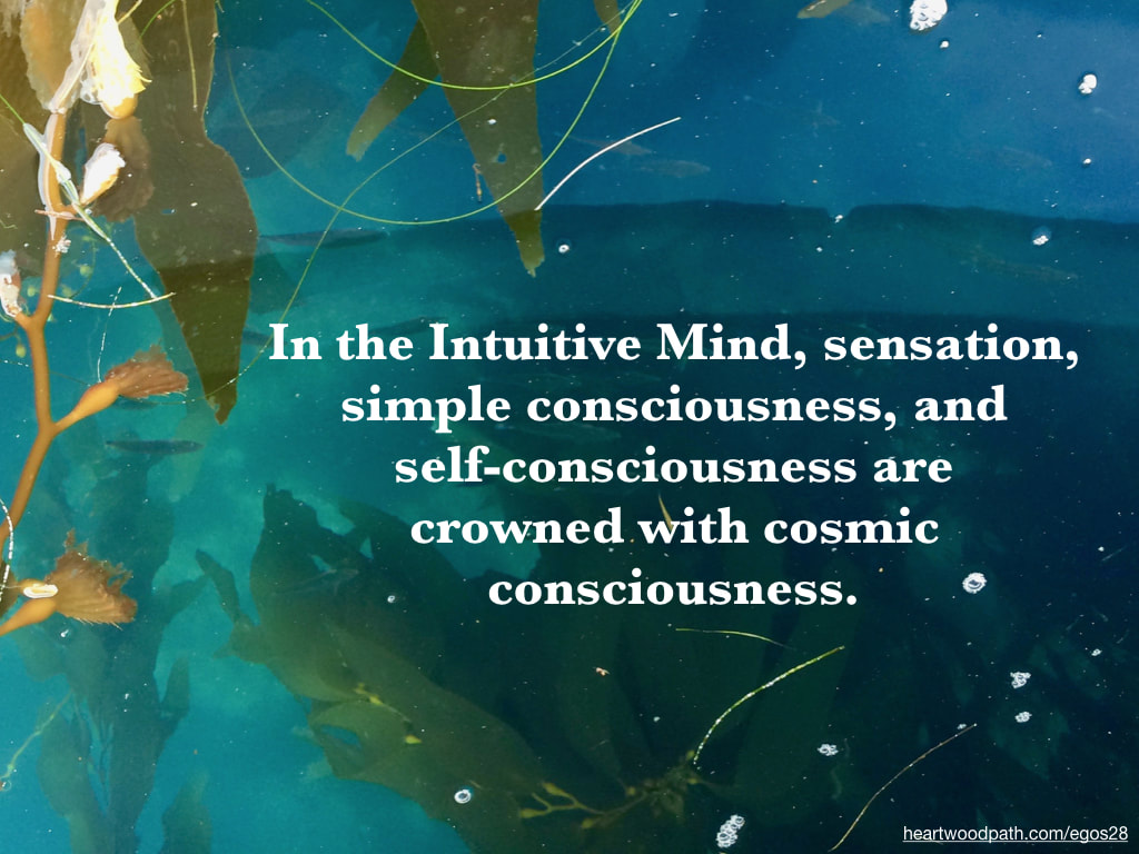 Picture sea weed quote In the Intuitive Mind, sensation, simple consciousness, and self-consciousness are crowned with cosmic consciousness
