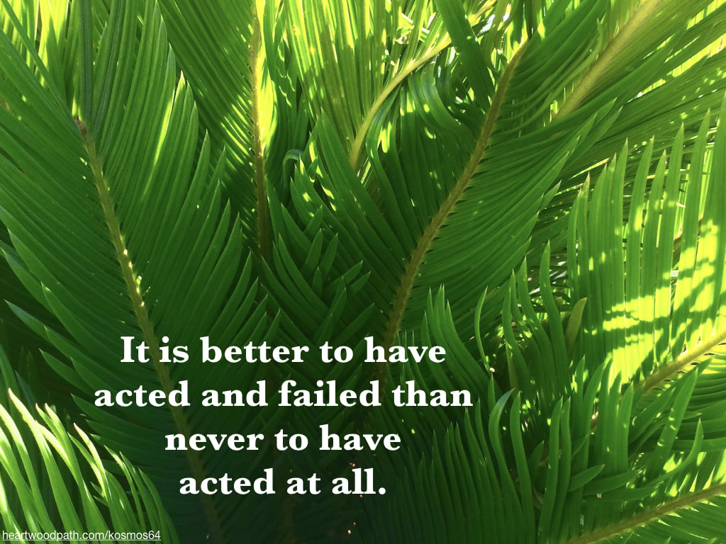 Picture palm fronds and words - It is better to have acted and failed than never to have acted at all