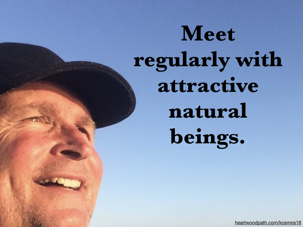 picture of life coach don pierce saying Meet regularly with attractive natural beings